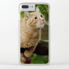 Photograph of a Cat hanging on a Limb Clear iPhone Case