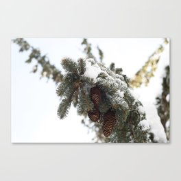 Blizzard of 2014 Canvas Print