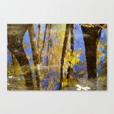 Water dreams III Canvas Print