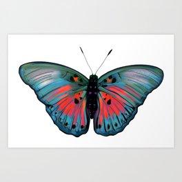 Butterfly Ryūboku Art Print