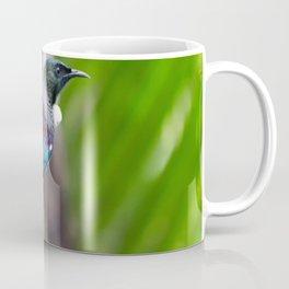 New Zealand Tui Coffee Mug