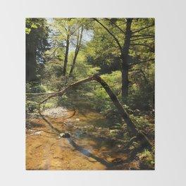 Muir Woods Impression Throw Blanket