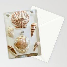 Vintage Seashells in Lucite Stationery Cards
