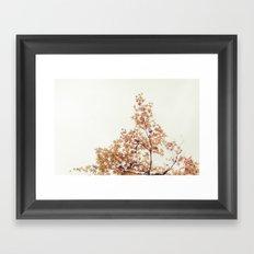 Autumn Stars Framed Art Print