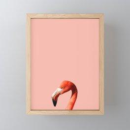 Flamingo in Pink Framed Mini Art Print