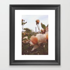 Flowers grow in Paris Framed Art Print