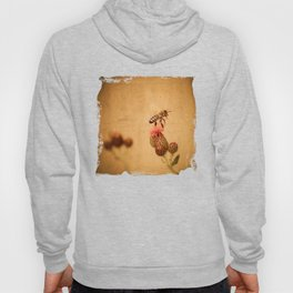 The Thistle And The Bee Hoody