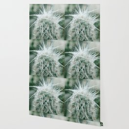 Cactus 06 Wallpaper