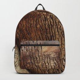 calypsos Backpack