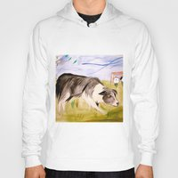 border collie Hoodies featuring Border Collie by Caballos of Colour