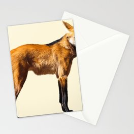 Maned Wolf Illustration Stationery Cards