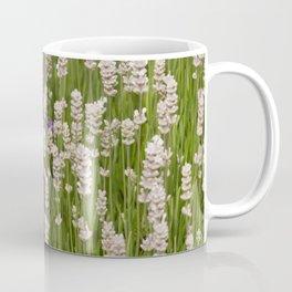 Lavender & White Lavender Coffee Mug