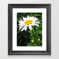 Round The Yellow Center Framed Art Print