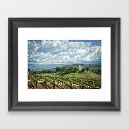 Vineyards, Temecula, CA Framed Art Print