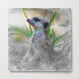 Artistic Animal Meerkat 2 Metal Print