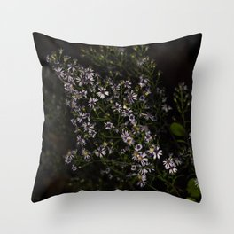 2017-09-22 Throw Pillow