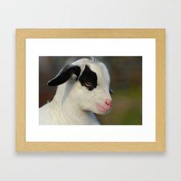 Baby Goat Portrait Framed Art Print