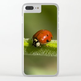 Ladybird Clear iPhone Case