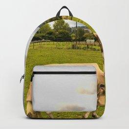 Horse Grazing Backpack
