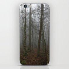 Foggy Woods iPhone & iPod Skin