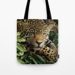 Jaguar - At Rest Tote Bag