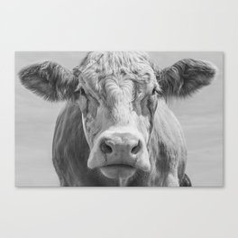 Animal Photography | Cow Portrait Black and White | Farm Animals Canvas Print