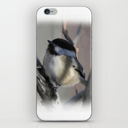 Chickadee iPhone Skin