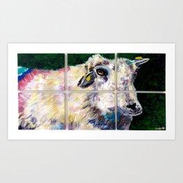 Colorful Dingle Sheep Art Print