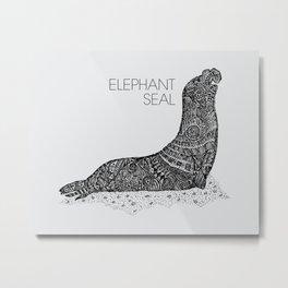 Elephant Seal Sketch Metal Print