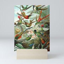 Ernst Haeckel Hummingbirds Mini Art Print