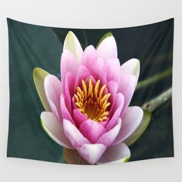 Pink / White Lotus Bloom Wall Tapestry