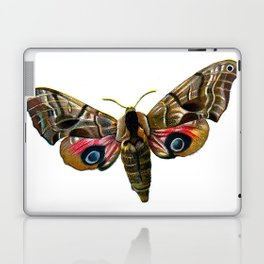 Moth Laptop & iPad Skin