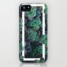 Cacti Slim Case iPhone (5, 5s)