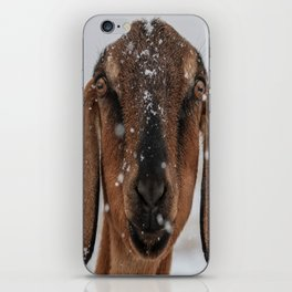 Braving the Snow iPhone Skin