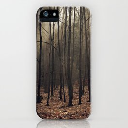 Winter magic forest iPhone Case