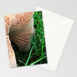 Mushroom and Dewdrops Stationery Cards