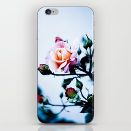 Roses are Red, Violets are Blue iPhone Skin