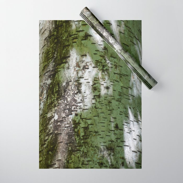 Birch Bark Pattern Green And White Wood Bring The Outdoors In Wring Paper By Theoldbarndoor