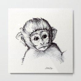Baby Vervet Monkey Metal Print