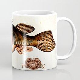 Deep sea fish, crabs and sea snails Coffee Mug