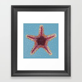 Sea Star 2 Framed Art Print