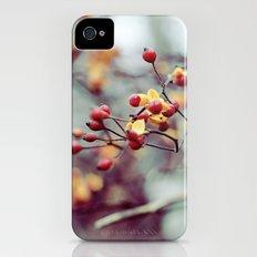 Frozen Fruit Slim Case iPhone (4, 4s)