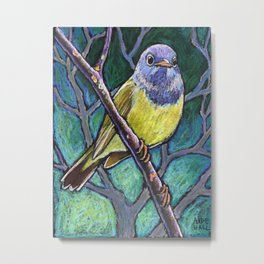 Connecticut Warbler Metal Print