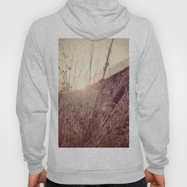 In a Different Light Hoody