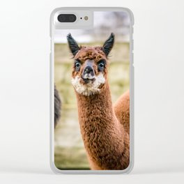 Cheeky Alpacas Clear iPhone Case