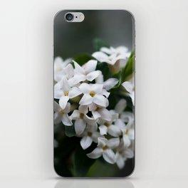 Viburnum iPhone Skin