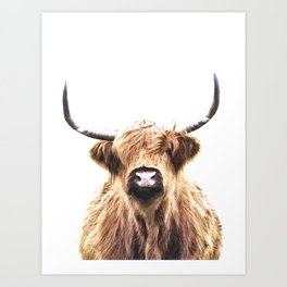 Highland Cow Portrait Art Print