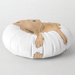 Colourful Pit Bulls, Pit Bulls Gift Floor Pillow