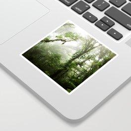 Cloud Forest Sticker