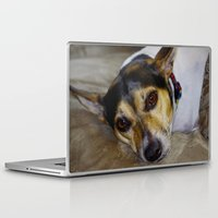 terrier Laptop & iPad Skins featuring Terrier by Rick Kirby
